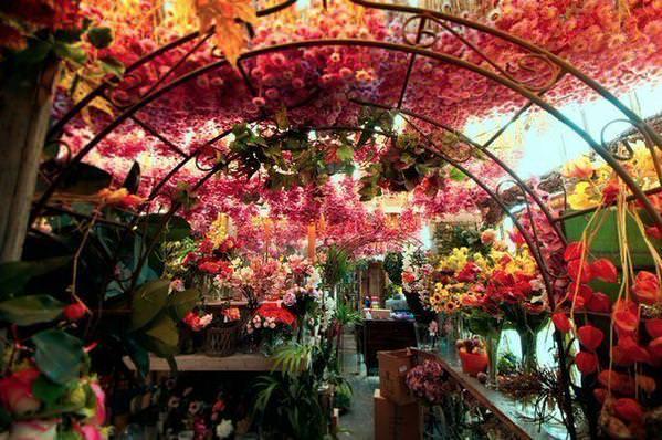Картинки по запросу цветочный магазин