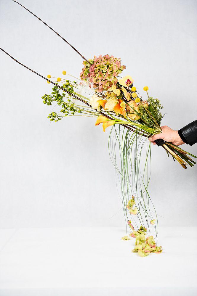 chb-po-floristike-den-2-004