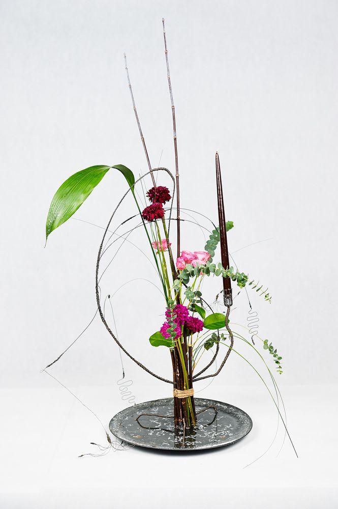 chb-po-floristike-den-2-016