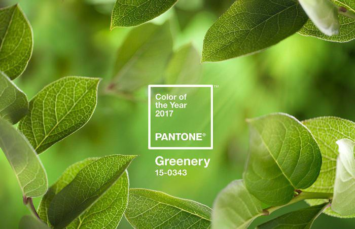 pantone-coy2017-heroshot2-rgb