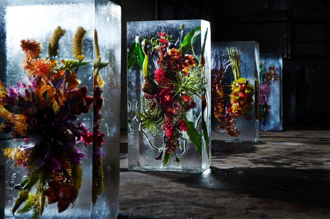 Инсталляция_Makoto-Azuma_Iced-Flowers_07