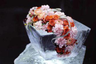 флорист, фото та же онег питер — копия